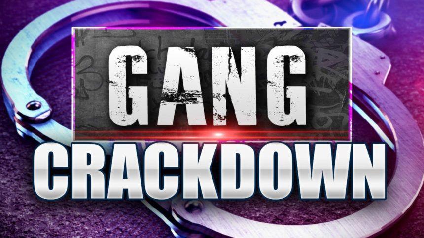 GANG CRACKDOWN