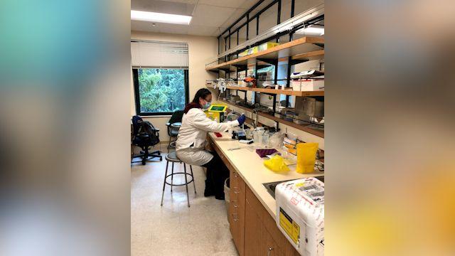 UCSC COVID-19 testing