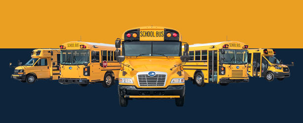 blue bird school buses