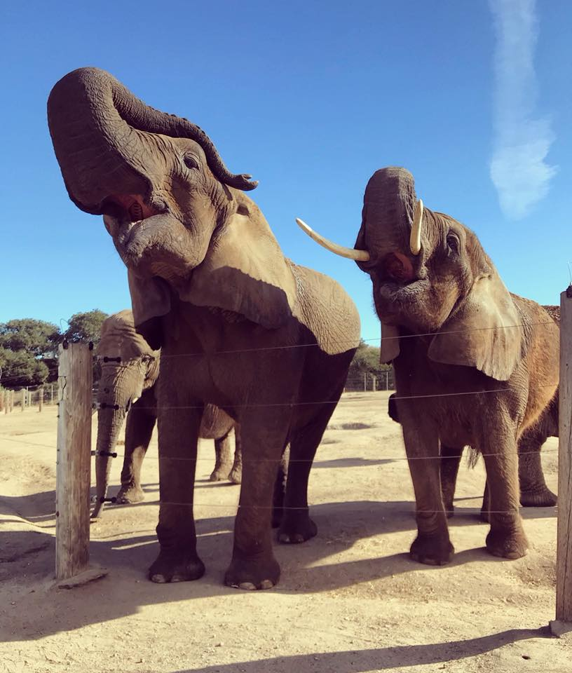 monterey zoo butch and kristi