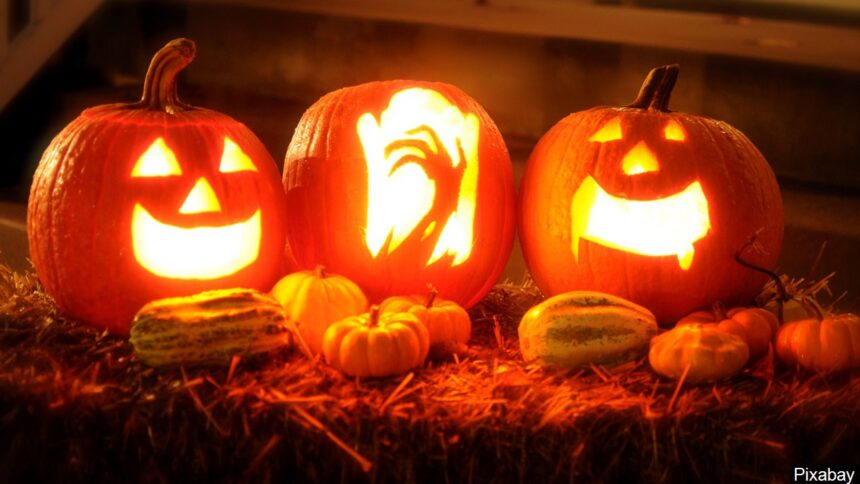 halloween pumpkin carving jack o lantern