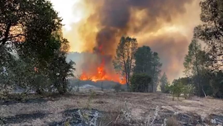 dolan fire spot fire still