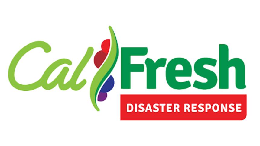 cal fresh disaster response sized
