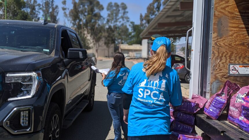 SPCA Free Pet Food Bank 4