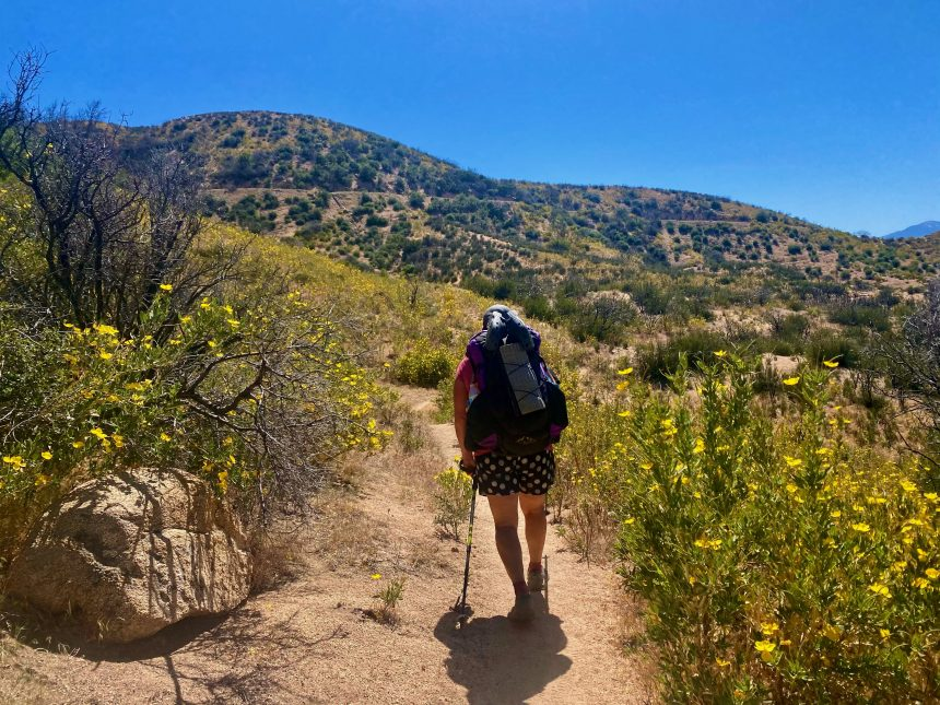 Diane Delucchi making her way through the Pacific Crest Trail.