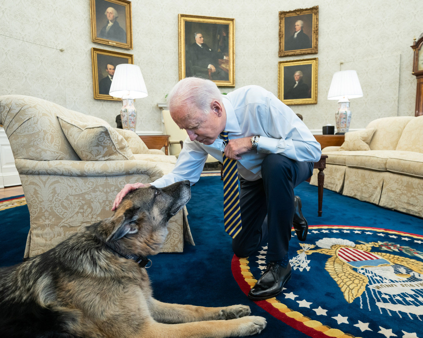 President Joe Biden pets the Biden family dog Champ in the Oval Office of the White House Wednesday, February 24, prior to a bipartisan meeting with House and Senate members to discuss supply chains.