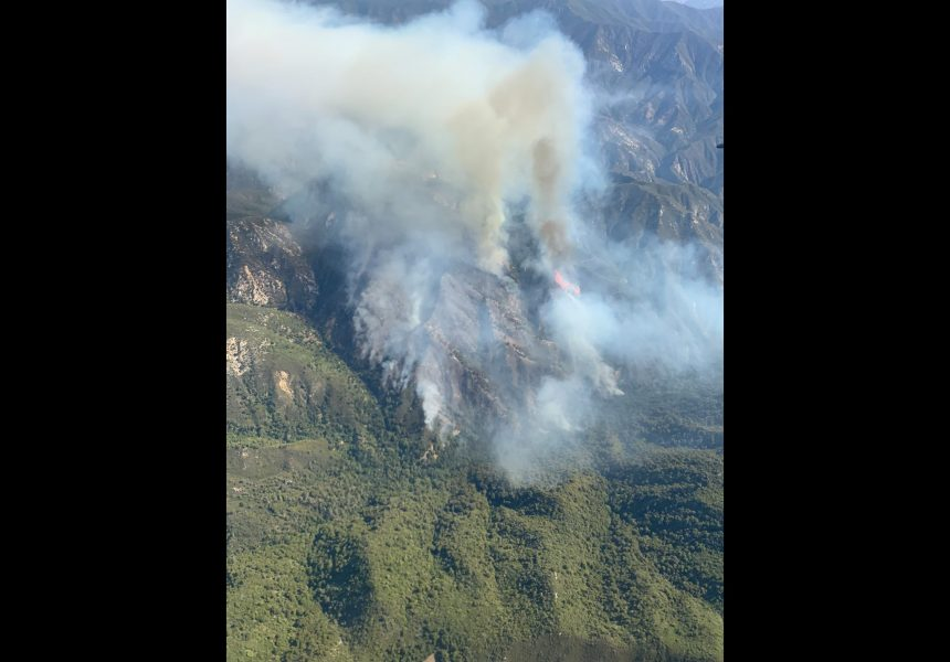 willow fire us forest service