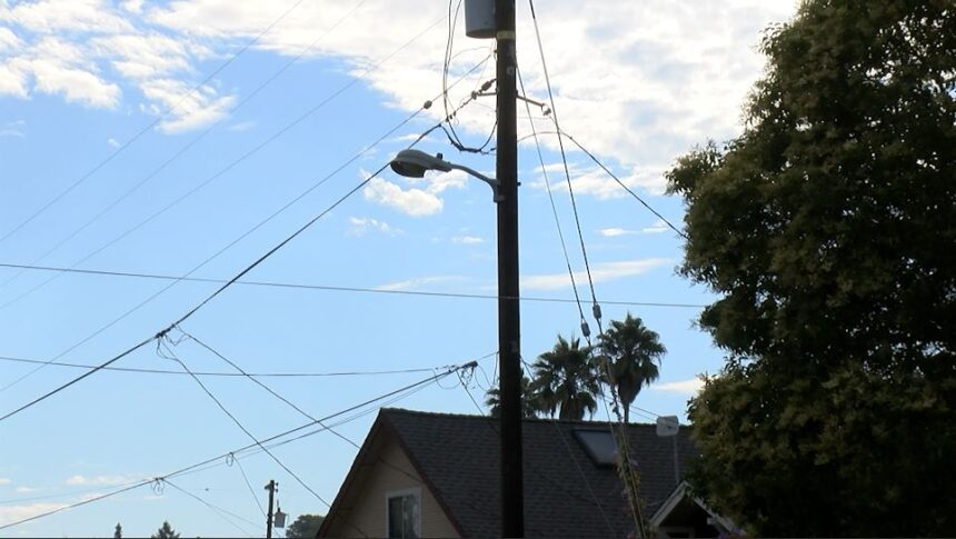 Santa Cruz Light Pole