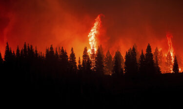 Flames from the Dixie Fire crest a hill in Lassen National Forest.
