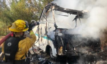 Cal Fire CZU responds to small vegetation fire Sunday