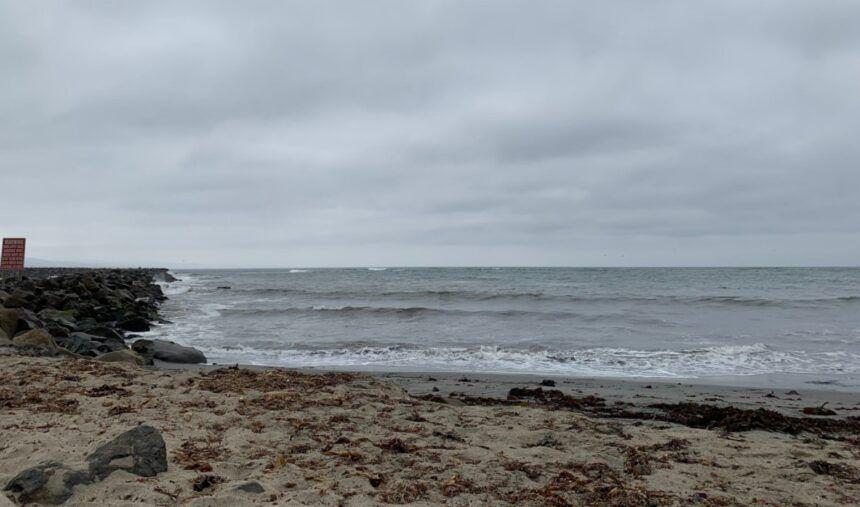 mavericks beach search 1